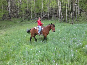 Gin took this picture of me on Gizmo when we were out on a ride!