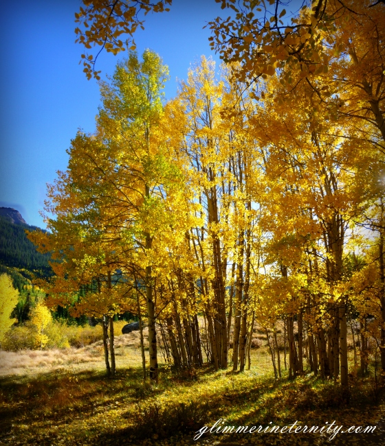 Fall is near!!