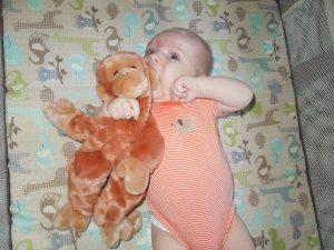 3 month monkey pic